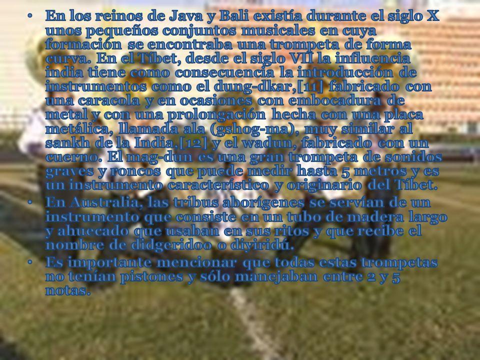 En los reinos de Java y Bali existía durante el siglo X unos pequeños conjuntos musicales en cuya formación se encontraba una trompeta de forma curva. En el Tíbet, desde el siglo VII la influencia india tiene como consecuencia la introducción de instrumentos como el dung-dkar,[11] fabricado con una caracola y en ocasiones con embocadura de metal y con una prolongación hecha con una placa metálica, llamada ala (gshog-ma), muy similar al sankh de la India,[12] y el wadun, fabricado con un cuerno. El mag-dun es una gran trompeta de sonidos graves y roncos que puede medir hasta 5 metros y es un instrumento característico y originario del Tíbet.